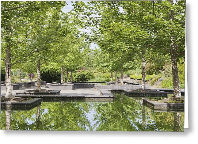 Pond In Park Greeting Cards - Bosque Garden Plaza Reflecting Pools Greeting Card by Douglas Orton