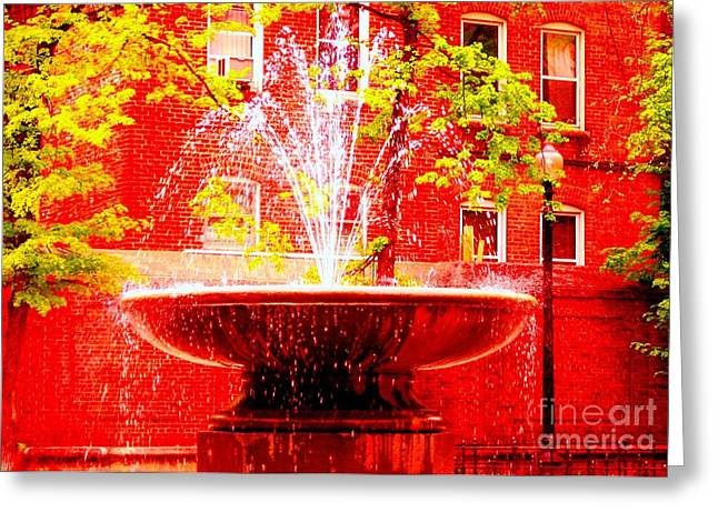 Boston Red Greeting Card by Ann Johndro-Collins