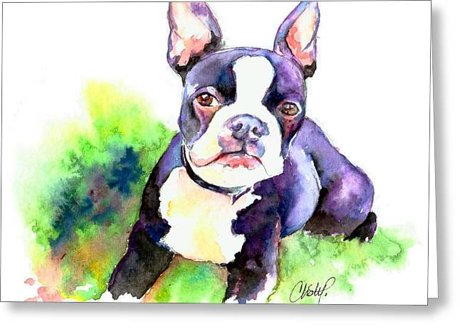 Bully Paintings Greeting Cards - Boston Terrier puppy Greeting Card by Christy  Freeman
