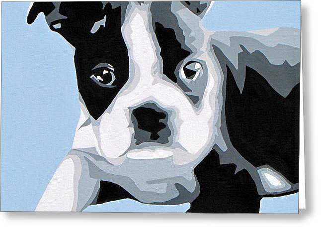 Boston Terrier Greeting Cards - Boston Terrier Greeting Card by Slade Roberts