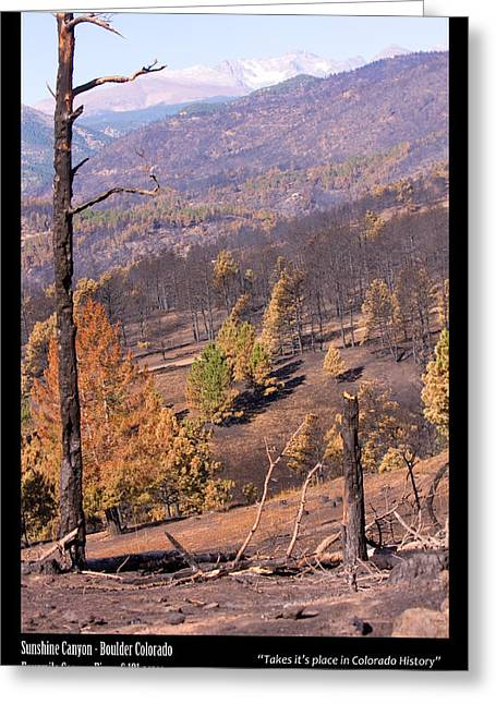 Striking Images Greeting Cards - Boulder County Wildfire 5 Miles West of Downtown Boulder Greeting Card by James BO  Insogna