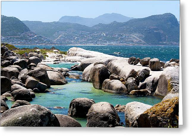 Simons Town Greeting Cards - Boulders Beach Greeting Card by Fabrizio Troiani