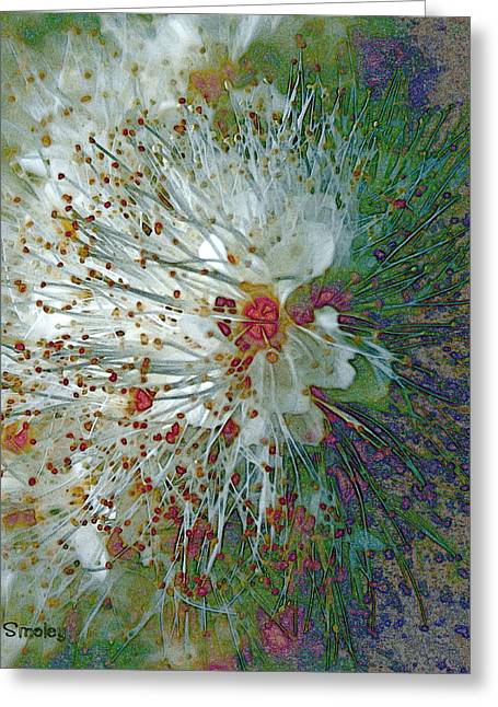 Stamen Digital Art Greeting Cards - Bouquet of Snowflakes Greeting Card by Joanne Smoley