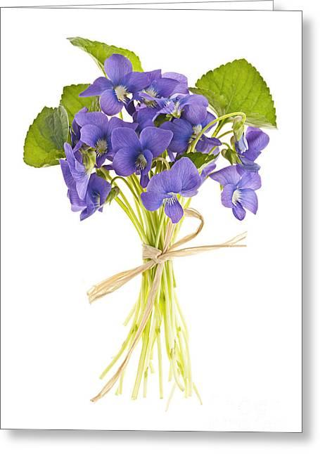 Floral Arrangement Greeting Cards - Bouquet of violets Greeting Card by Elena Elisseeva