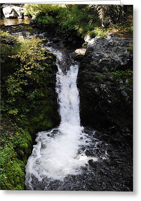Arlyn Petrie Greeting Cards - Bowl Falls Greeting Card by Arlyn Petrie