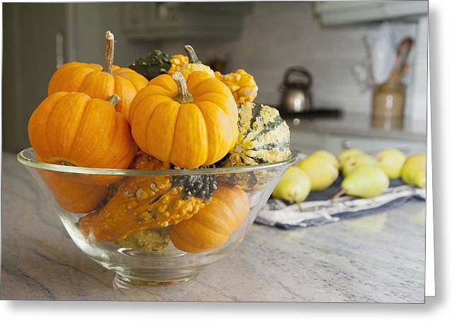 Fresh Produce Greeting Cards - Bowl Of Gourds And Mini Pumpkins Greeting Card by Marlene Ford