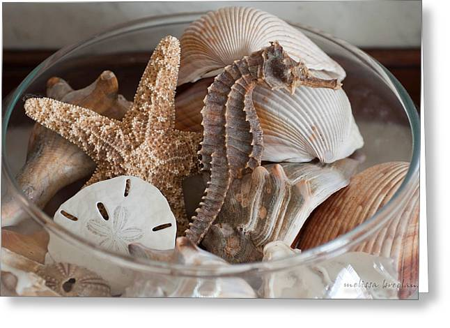 Star Fish Greeting Cards - Bowl of Ocean Greeting Card by Melissa Wyatt