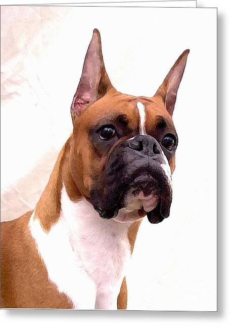 Boxer 129 Greeting Card by Larry Matthews