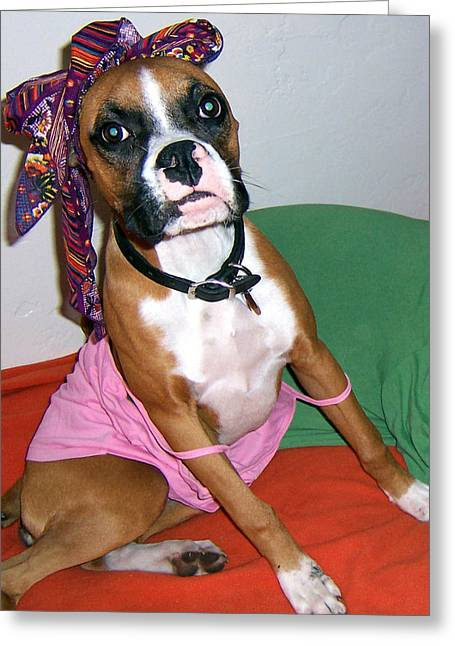 Puppies Greeting Cards - Boxer Girl Greeting Card by Tisha McGee