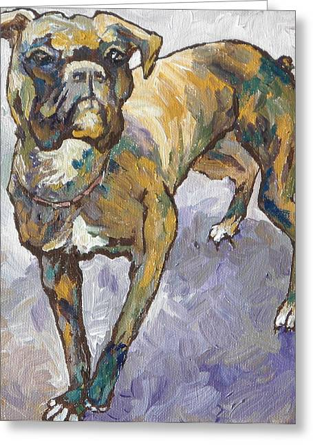 Brindle Greeting Cards - Boxer Greeting Card by Sandy Tracey