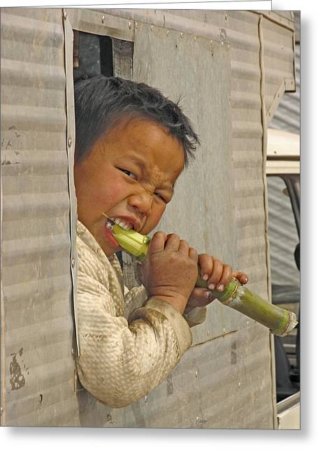 Consume Greeting Cards - Boy Eating A Sugar Cane Greeting Card by Bjorn Svensson