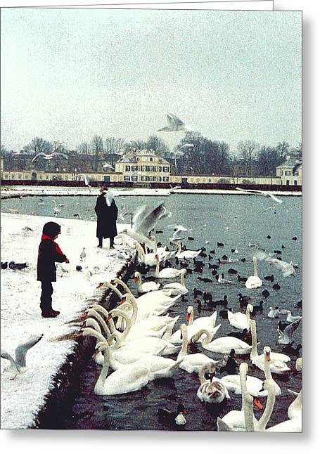 Swans... Digital Art Greeting Cards - Boy Feeding Swans- Germany Greeting Card by Nancy Mueller