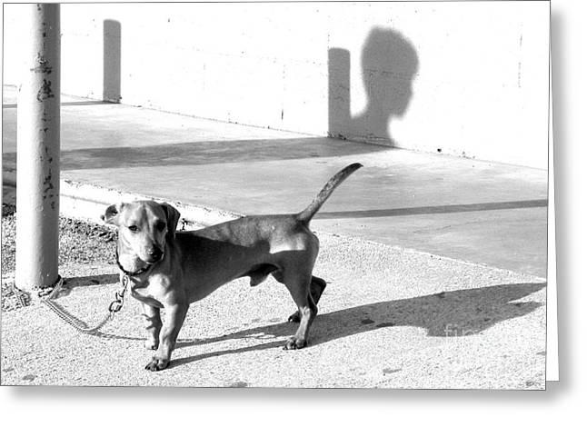 Dog Prints Greeting Cards - Boy Meets Dog Greeting Card by Joe Jake Pratt