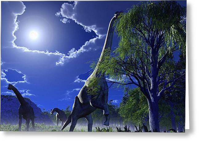 Moonlit Night Greeting Cards - Brachiosaurus Dinosaurs, Artwork Greeting Card by Roger Harris