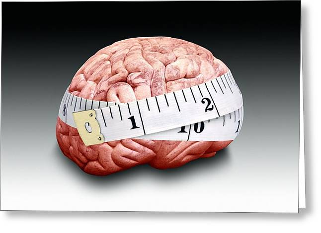 Circumference Greeting Cards - Brain Size, Conceptual Image Greeting Card by Victor De Schwanberg