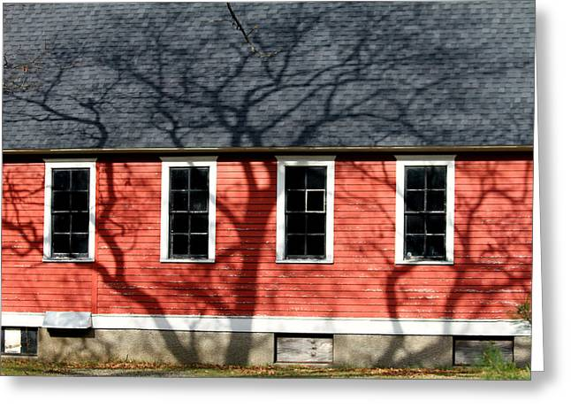 Red School House Greeting Cards - Branching Out Greeting Card by Mark J Seefeldt