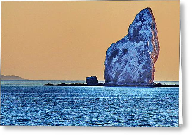 Sea Of Cortez Greeting Cards - Breaching Whale Greeting Card by Russ Harris