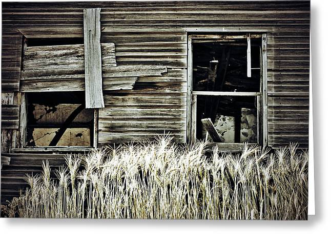 Edmonton Photographer Greeting Cards - Bread To The Knees  Greeting Card by Jerry Cordeiro