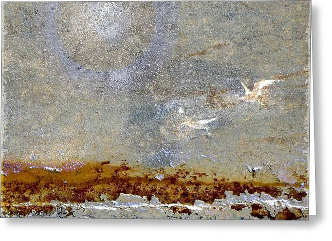 Gull Seagull Greeting Cards - Breakwater Greeting Card by Carol Leigh