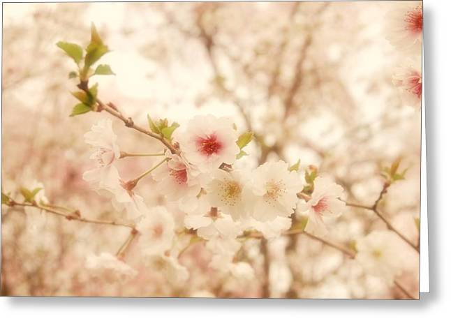 Muted Greeting Cards - Breathe - Holmdel Park Greeting Card by Angie Tirado