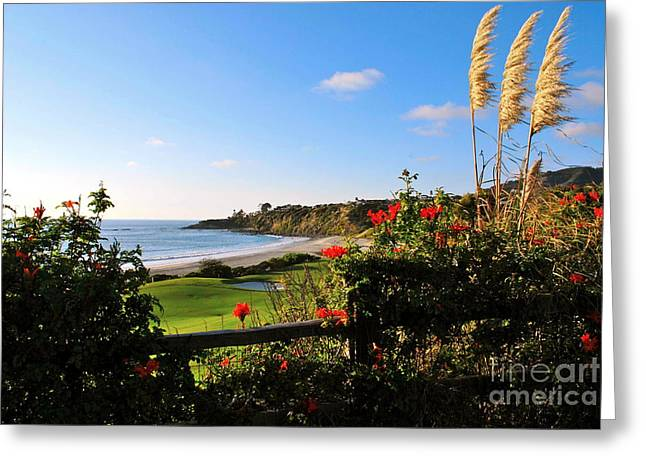 The Link Photographs Greeting Cards - Breathe In 2 Greeting Card by Johanne Peale