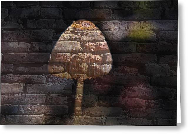 Fungi Mixed Media Greeting Cards - Brick Mushroom Greeting Card by Living Waters Photography