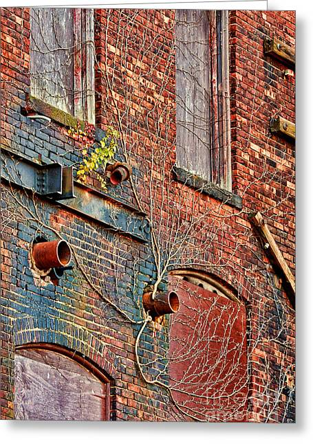 Vines Greeting Cards - Bricks And Vines Greeting Card by HD Connelly