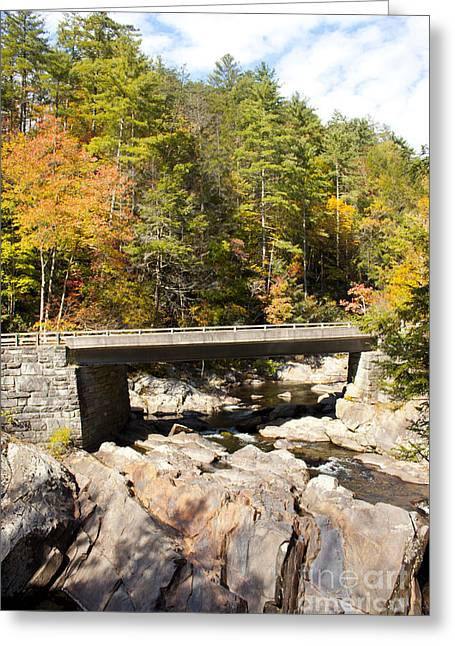 Gatlinburg Tennessee Greeting Cards - Bridge Greeting Card by Lena Auxier