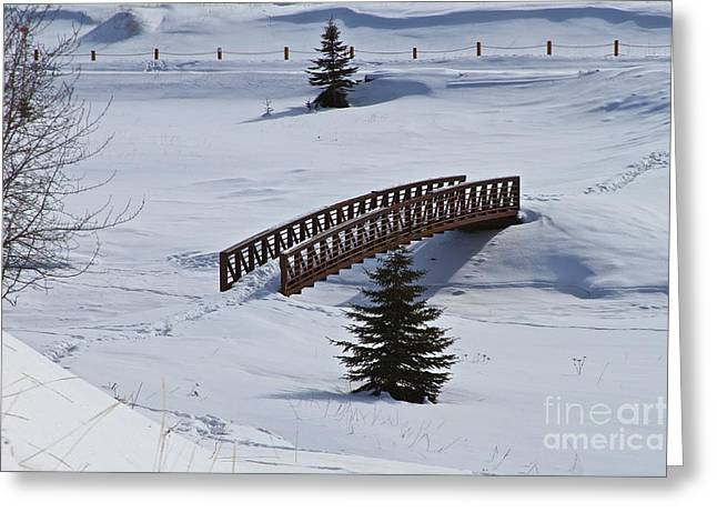 Snow Drifts Greeting Cards - Bridge Over Frozen Water Greeting Card by Rick  Monyahan