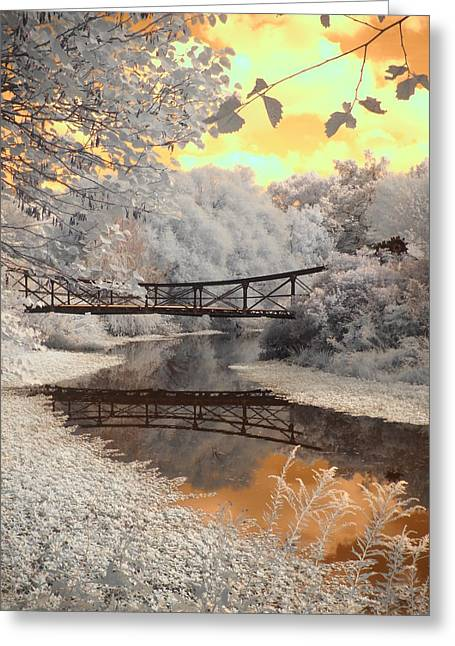 Photographers Forest Park Greeting Cards - Bridge Reflections Greeting Card by Jane Linders