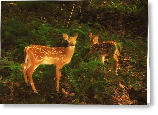Rudolph Digital Art Greeting Cards - Bright Eyes Greeting Card by Bill Cannon