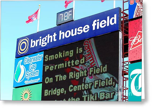 Bright House Field Greeting Card by Carol Christopher