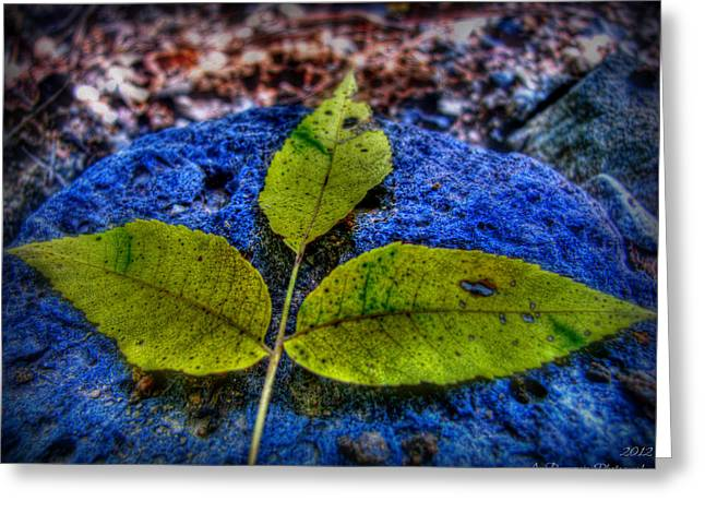Prescott Greeting Cards - Bright Yellows and Blues Greeting Card by Aaron Burrows