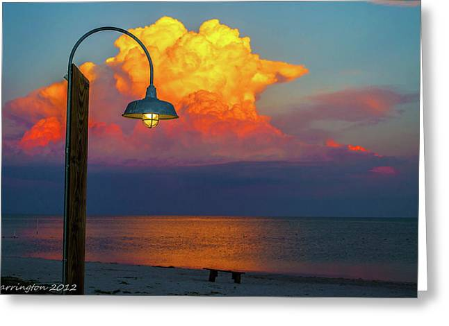 Cedar Key Greeting Cards - Brilliant Greeting Card by Shannon Harrington
