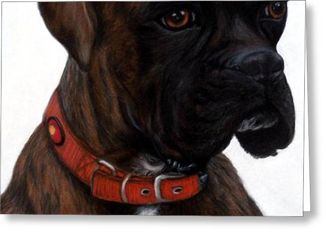 Brindle Boxer Greeting Card by Michelle Harrington