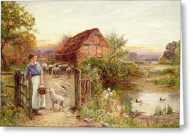 Lane Greeting Cards - Bringing Home the Sheep Greeting Card by Ernest Walbourn