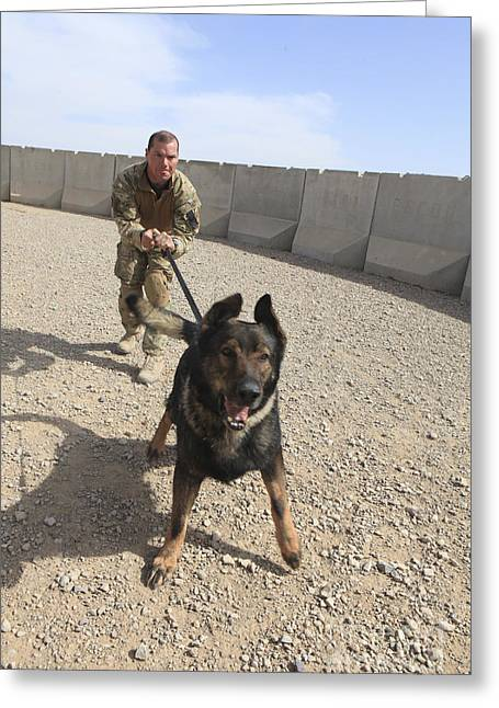 Working Dog Greeting Cards - British Soldier Restrains His Military Greeting Card by Stocktrek Images