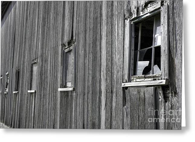 Illinois Barns Photographs Greeting Cards - Broadside of a barn Greeting Card by David Bearden