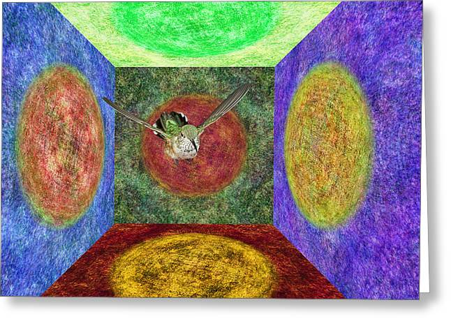 Nexus Greeting Cards - Broadtailed Hummingbird in a Nexus of Five Portals Greeting Card by Gregory Scott