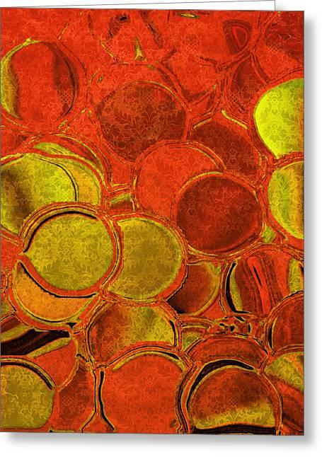 Tangerine Greeting Cards - Brocade Circles Greeting Card by Bonnie Bruno