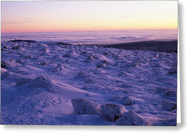 Refuges And Reserves Greeting Cards - Brocken Mountain Summit At Twilight Greeting Card by Norbert Rosing