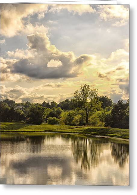 Tree Lines Digital Greeting Cards - Broemmelsiek Park Lake 2 Greeting Card by Bill Tiepelman