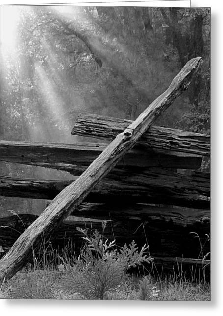 Split Rail Fence Greeting Cards - Broken Fence in Morning Light at Yosemite Greeting Card by Greg Matchick
