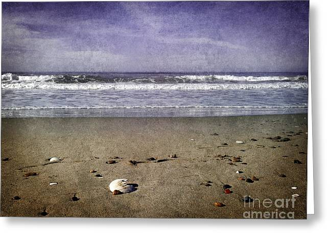 Seashell Digital Greeting Cards - Broken Shell at Twilight Greeting Card by Laura Iverson