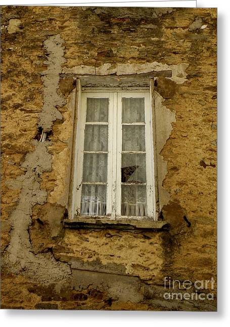 Lainie Wrightson Greeting Cards - Broken Window Greeting Card by Lainie Wrightson