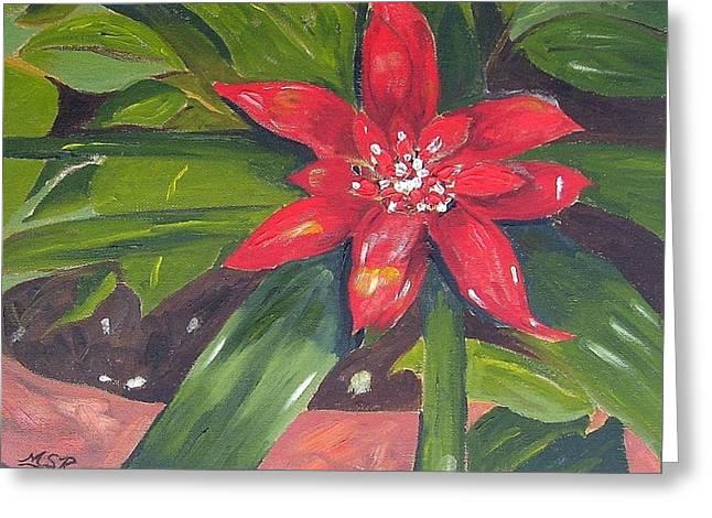 Bromeliad Paintings Greeting Cards - Bromeliad Bloom Greeting Card by Maria Soto Robbins