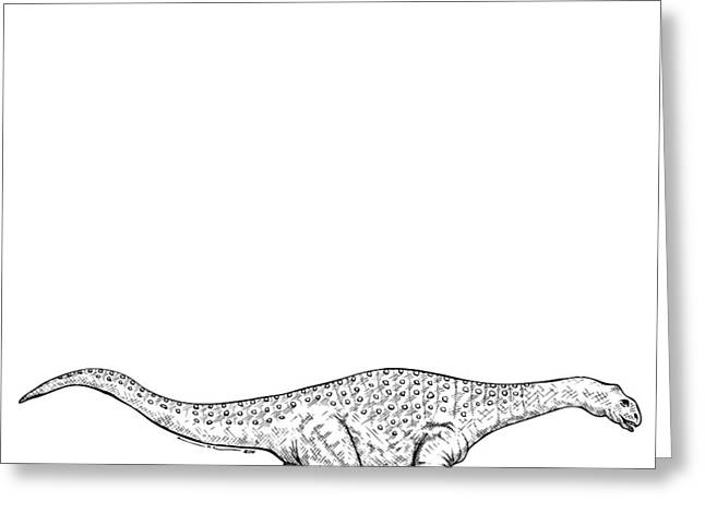 Ink Outlines Greeting Cards - Brontonsaurs - Dinosaur Greeting Card by Karl Addison