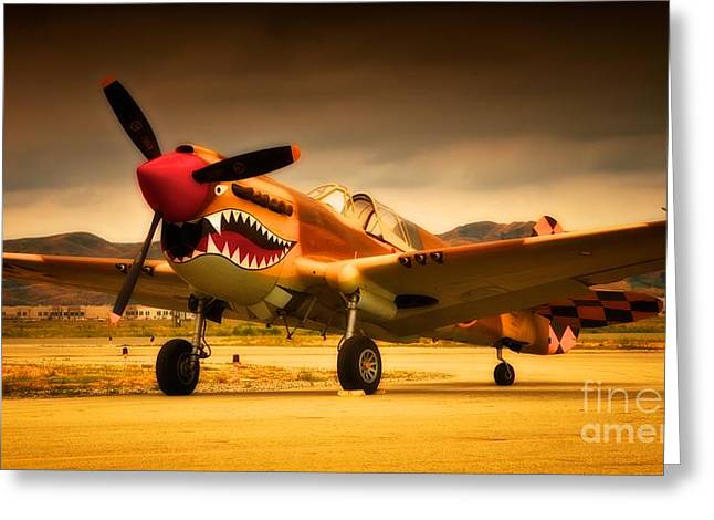 Flying Tigers Greeting Cards - Brooding Tiger Greeting Card by Gus McCrea