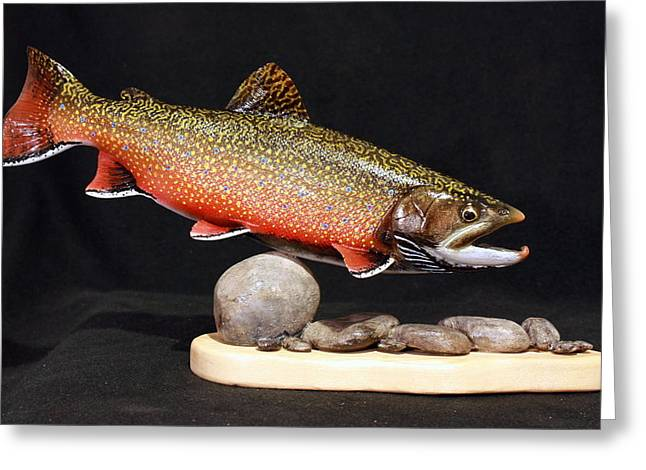 Brook Trout 14 inch Greeting Card by Eric Knowlton
