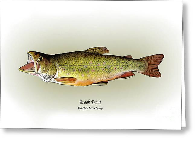 Trout Fishing Drawings Greeting Cards - Brook Trout Greeting Card by Ralph Martens